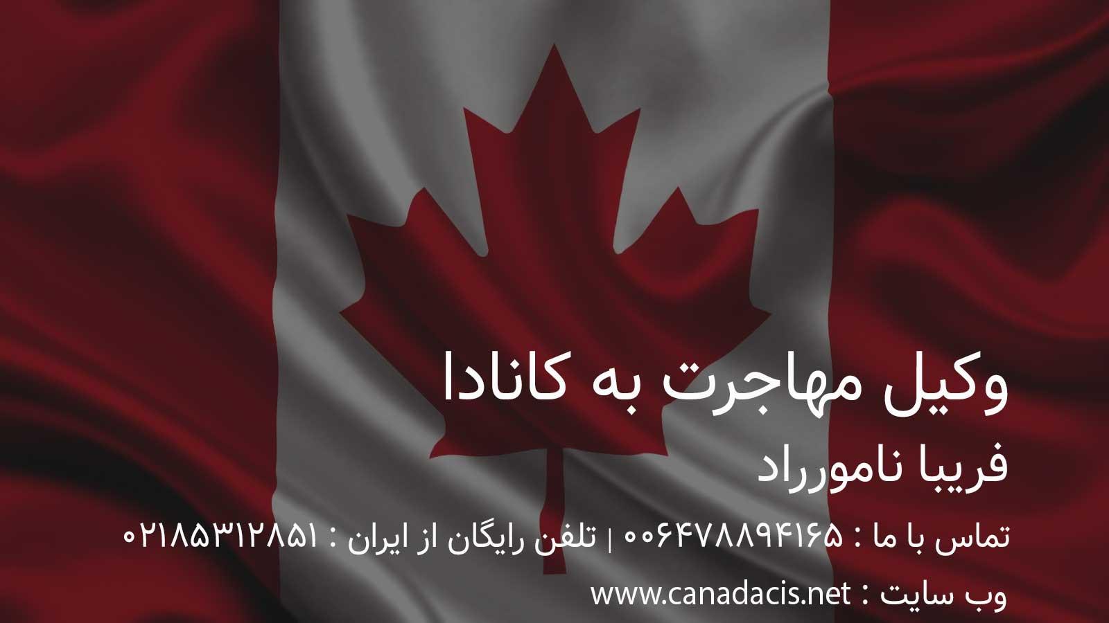 وکیل حرفه ای حقوقی مهاجرت به کانادا